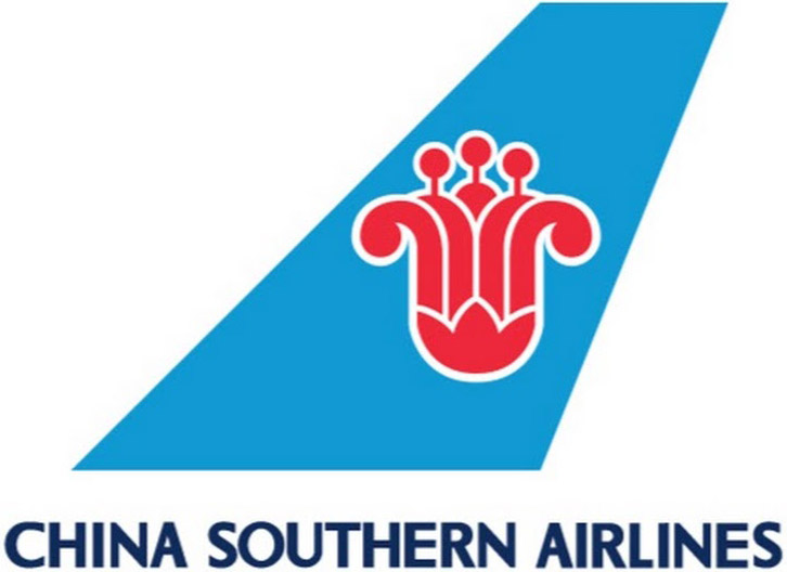 Resultado de imagen para China southern logo